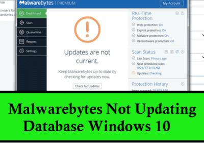 How to Fix Malwarebytes Not Updating on Windows 10?