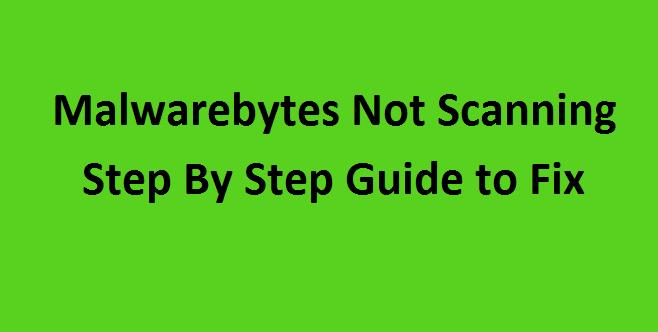 Malwarebytes not scanning