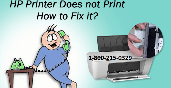 How to Fix Hp Printer Not Printing?
